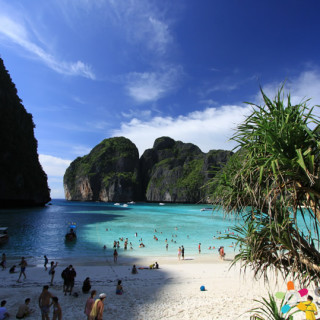 Phi Phi Island + Maya Bay + Bamboo Island Full Day Trip By Speedboat (From Phuket)