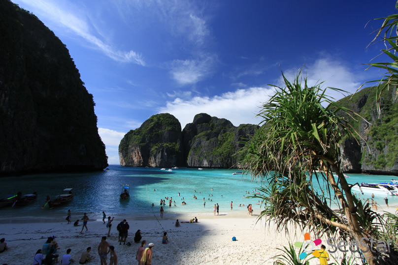 Phi Phi Island Day Tour Cheap Price