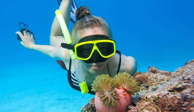 Similan Islands Snorkeling Trip by Speedboat (From Phuket, Krabi, Khao Lak)