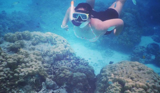 Surin Islands Overnight Snorkeling Tour By Speedboat (From Phuket, Krabi, Khao Lak)
