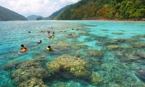 Surin Islands Snorkeling Day Trip by Speedboat (From Phuket, Krabi, Khao Lak)