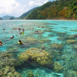 Surin Islands Snorkeling Day Trip by Speedboat (From Phuket, Krabi, Khao Lak)